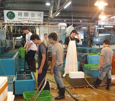 Aberdeen hong kong extras3 for Wholesale fish market