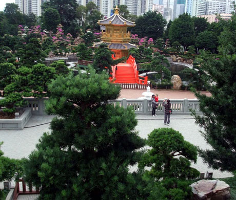 view of the garden from nan lian rocks by the bridge linking the garden with chi lin nunnery - Nan Lian Garden