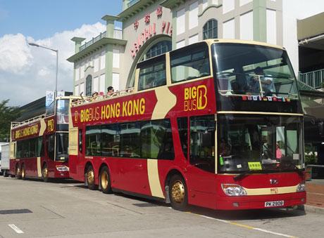 bus best hong kong escorts